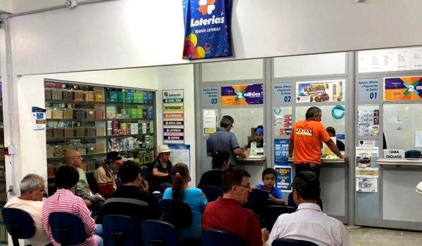 Aposta simples ganha R$ 450 mil na Lotofácil em Palmeira - ARede